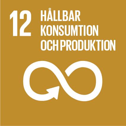 Sustainable-Development-Goals_icons-12